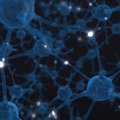 A new tool to understand the brain