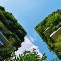 Nieuw onderzoek werpt licht op toekomstige routes voor steden op het gebied van duurzaamheid en klimaatactie