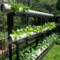 Students get to work on vertical horticulture in Kenya