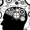 Onderzoek opent black box van data-gedreven keuzemodellen