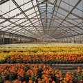 Reducing gas consumption of greenhouses