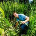 Urban Ecology: natuur in de stad steeds belangrijker